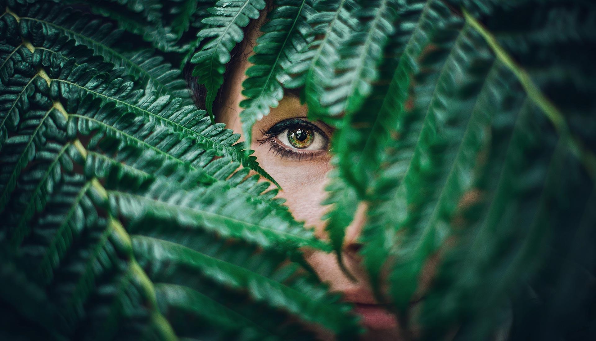 Occhio di donna tra foglie portfolio MirabolaMente